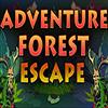 ENA Games Adventure Forest Escape