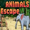 Animals Escape