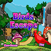 Birds Escape
