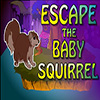 Escape The Baby Squirrel