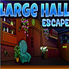 Large Hall Escape