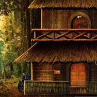 Image Amazon Forest Escape