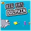 BIG FAT DOLPHIN