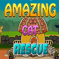 Amazing Cat Rescue Games2Jolly