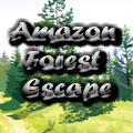Amazon Forest Escape G2A