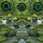 Amazon Rainforest Escape Games2Rule