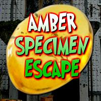 Amber Specimen Escape YolkGames