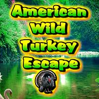 American Wild Turkey Escape WowEscape