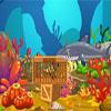 Angel Fish Escape