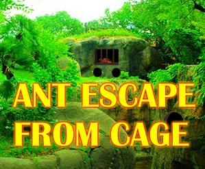 Ant Escape From Cage GamesNovel