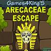 Arecaceae Escape