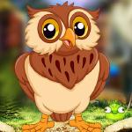 Audacious Owl Escape PalaniGames