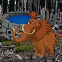 Baby Mammoth Escape WowEscape