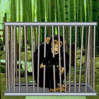 Bamboo Forest Monkey Escape WowEscape