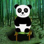 Bamboo Forest Panda Rescue BigEscapeGames