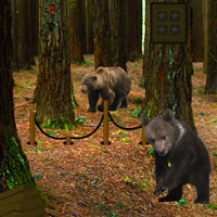 Bear Forest Escape Games2Rule