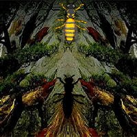 Bee Forest Escape 8BGames