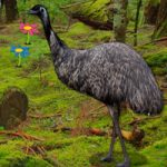Big Emu Forest Escape BigEscapeGames