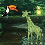 Big Forest Land Escape BigEscapeGames