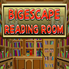 Bigescape Reading Room