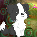 Black And White Puppy Escape Games4King