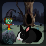 Black Bunny Rescue Games4Escape