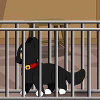 Black Cat Rescue TheEscapeGames