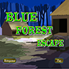 Blue Forest Escape