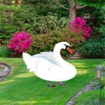 Botanic Garden Swan Escape Games2Rule