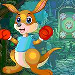 Boxing Kangaroo Rescue Games4King