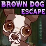 Brown Dog Escape Games4King