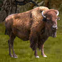 Buffalo Mountain Escape EscapeGamesZone