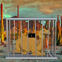 Cactus Desert Camel Rescue HiddenOGames
