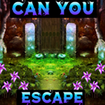 Can You Escape Games4King