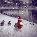 Canard De Noel Puzzle OceanDesJeux