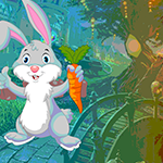 Carrot Rabbit Rescue Games4King