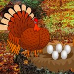 Catch A Turkey And Eggs WowEscape