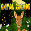 Chital Escape TheEscapeGames