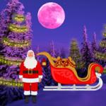 Christmas Light Forest Escape WowEscape