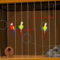 City Parrot Rescue EscapeGamesToday