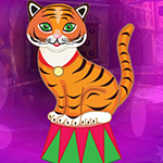 Comely Circus Tiger Escape Games4King