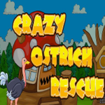 Crazy Ostrich Rescue Games2Jolly