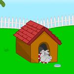 Crazy Yard Escape MouseCity