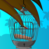 Cuckoo Bird Rescue GamesClicker