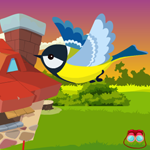 Cute Bird Escape Games4King