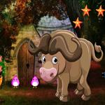 Cute Buffalo Rescue Games4King