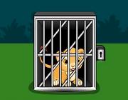 Cute Lion Cub Escape Escape Games Today