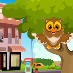 Cute Owl Rescue Games4King