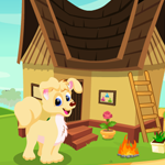 Cute Puppy Escape Games4King