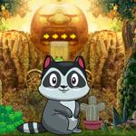 Cute Raccoon Escape Games4King